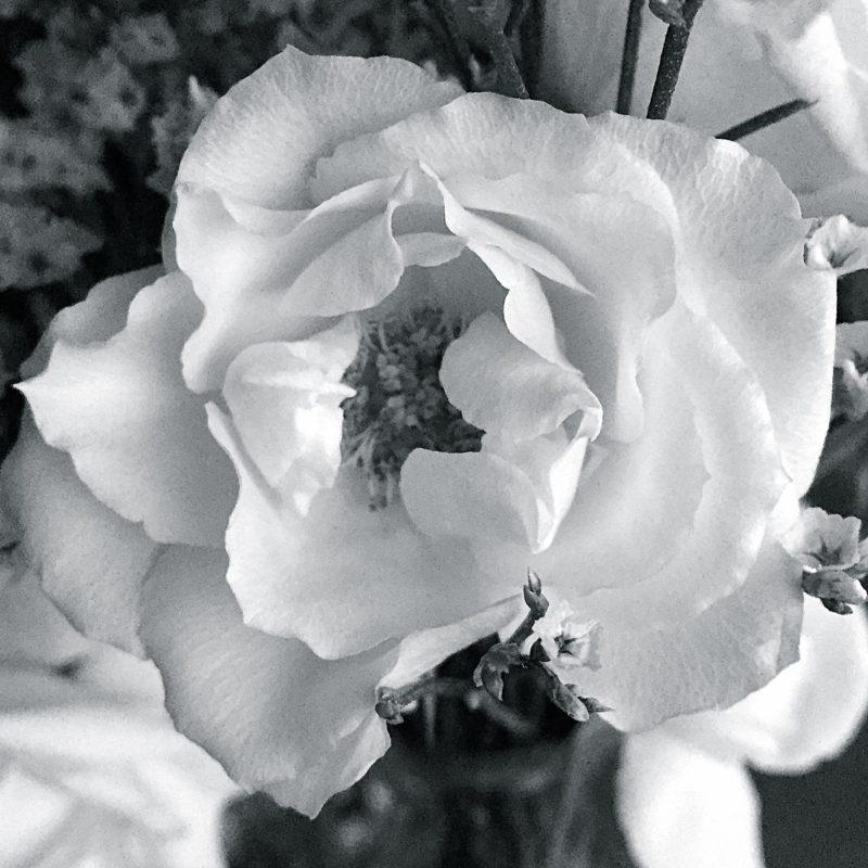 Flowers c2-interiors.com